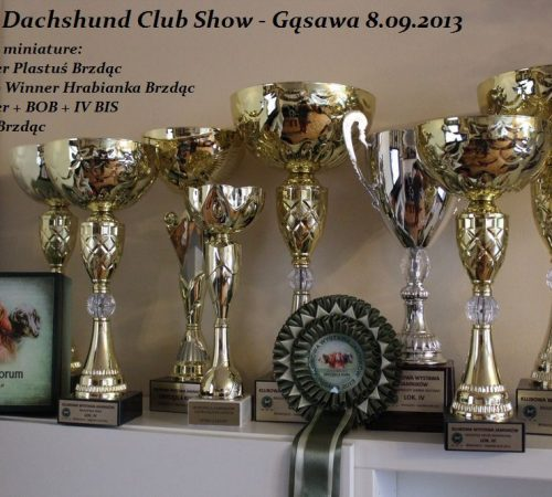 puchary Club show 2013